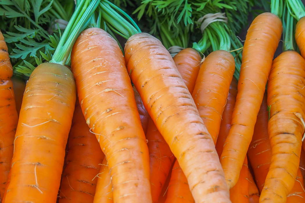 carrots are perfect for juicing vegetables